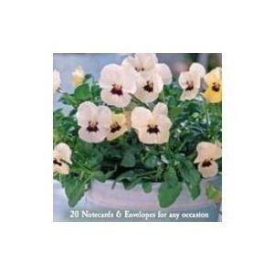 notecard-flatpack-set-a20-potted-plants-10481380