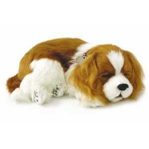 knuffel-perfect-petzzz-soft-hond-cavalier-king-charles-10593832