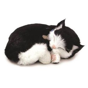knuffel-perfect-petzzz-soft-kat-black-white-shorthair-10593834