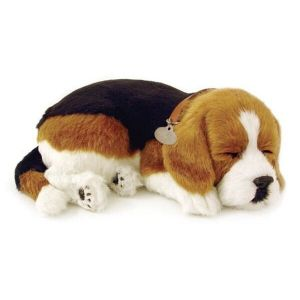 knuffel-perfect-petzzz-soft-beagle-10697863