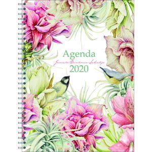bureau-agenda-2020-janneke-brinkman-amaryllis-10921381