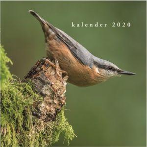 jaarkalender-vogels-2020-de-hobbit-10921665