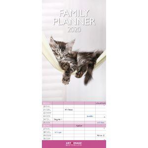 kalender-2020-30-x-30-kittens-10922299