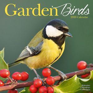 kalender-2020-garden-birds-10924737