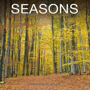kalender-2020-seasons-10924754