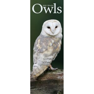 slimline-kalender-2020-owls-10924767