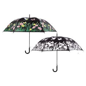 paraplu-vogel-veranderde-kleur-960714